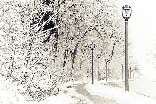 Snowstorm on Lincoln Memorial Drive by Joel Witmeyer