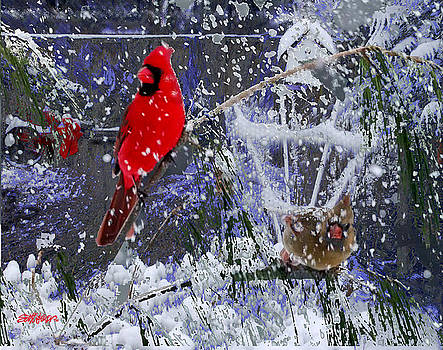 Snowstrom by Seth Weaver
