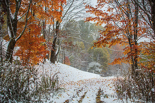 Snowvember by Blue Ridge Mountain Life