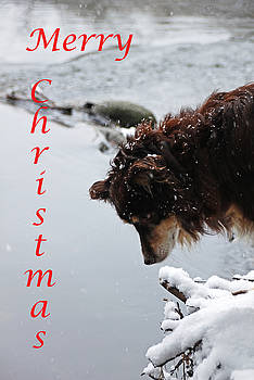 Debbie Oppermann - Snowy Aussie - Merry Christmas