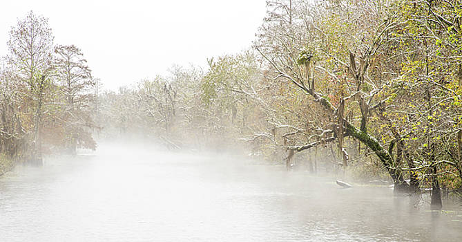 Snowy bayou by Andy Crawford