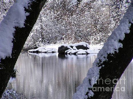Snowy Bear River by Nancy Chambers