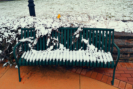 Snowy Bench In March by Emmanuel Rivera