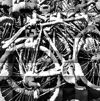 Snowy Bike by Joan Reese