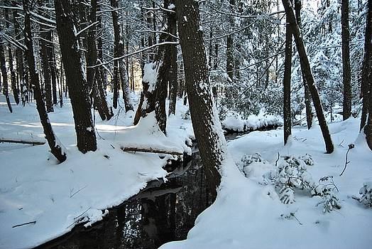 Snowy brook by Pamela Keene