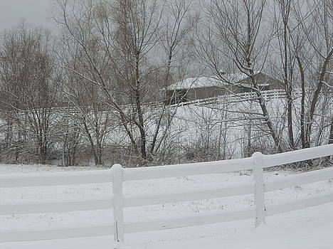 Snowy Country Side by Emma Sechrest