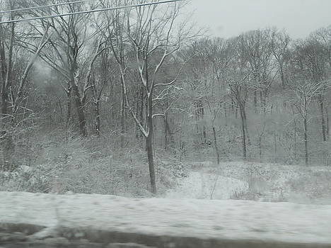 Snowy Day by Emma Sechrest