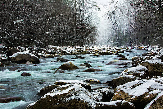 Snowy Day In Smoky Mountains by Carol Mellema