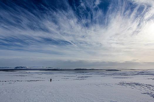 Snowy Day by Jennifer Ansier