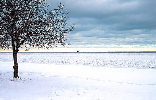 Milena Ilieva - Snowy Day