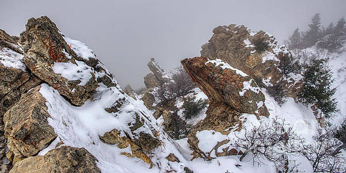 Snowy Desolation by Spencer Baugh