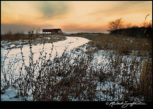Snowy Dusk and Landscape by Melinda Swinford