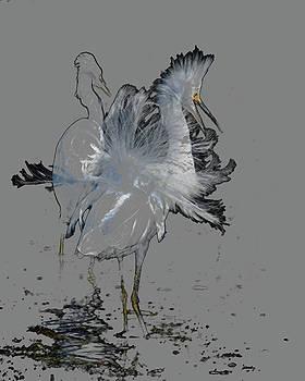 Snowy Egrets by Pamela Rose Hawken