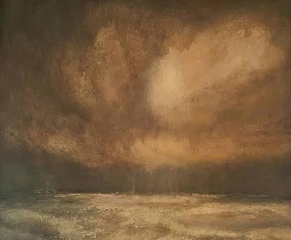 Snowy field by Joe Leahy