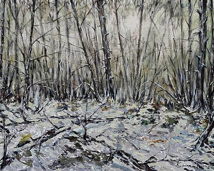 Snowy Forest by Eugene Kuperman
