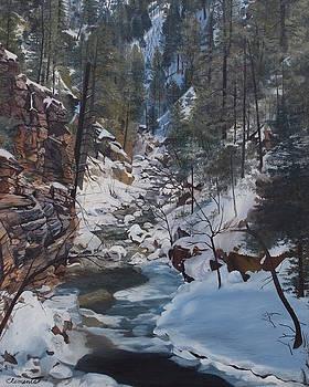 Snowy forest stream by Barbara Barber