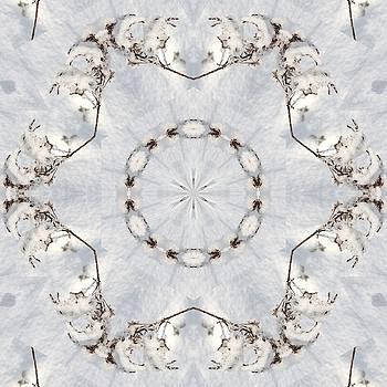 Valerie Kirkwood - Snowy Goldenrod Kaleidoscope