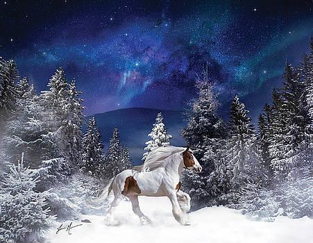 Snowy Gypsy Travels by Jamie Mammano