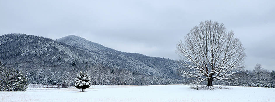 Snowy Landscape at Cades Cove by Lance King
