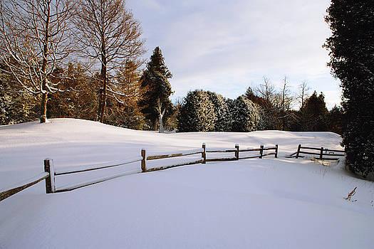 Snowy Landscape With Wooden Fence by Gillham Studios