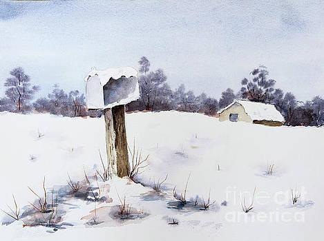 Snowy Mailbox by Pattie Calfy