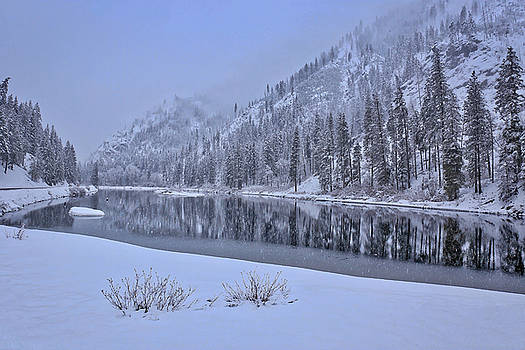 Snowy morning with reflections by Lynn Hopwood