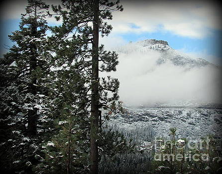 Snowy Mountain above Donner Lake by Joy Patzner