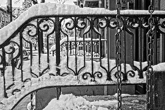 Snowy NYC Steps by Joan Reese