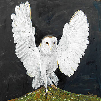 Snowy Owl by Christine Lathrop