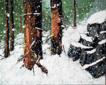 Snowy Redwood Dream by L J Oakes