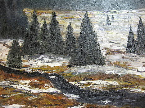 Snowy River by Brian Hustead