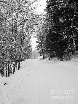 Snowy Road by Katrina Perekrestenko