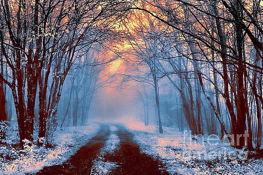 Snowy Spring Sunrise on the Cherohala Skyway BW FX by Dan Carmichael