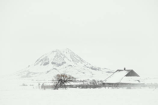 Snowy Sunrise by Fiskr Larsen
