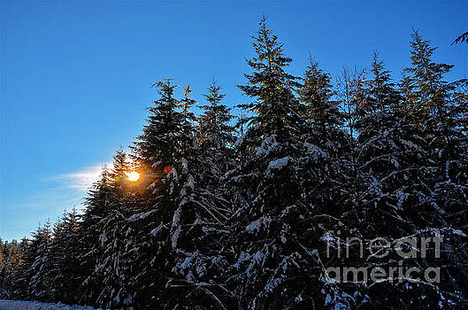 Snowy sunset by Frank Larkin