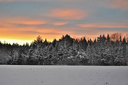 Snowy sunset by Pamela Keene