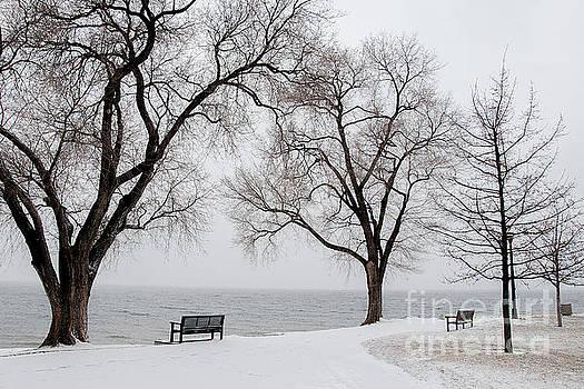 Snowy Trail by David Emond