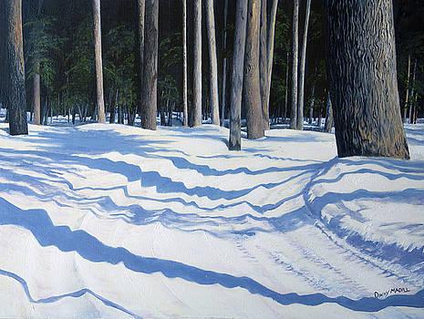 Snowy Trail by Dinny Madill