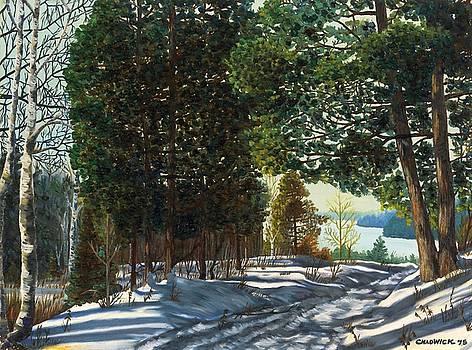 Snowy Trails by Phil Chadwick