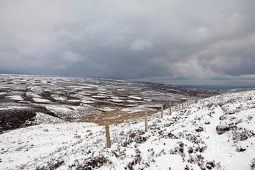 Snowy West Bolton Moor by Gavin Dronfield