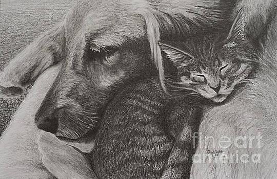 Snuggle Buddies by Chad Keith
