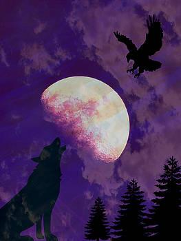 Soaring Howl by Amanda Eberly-Kudamik