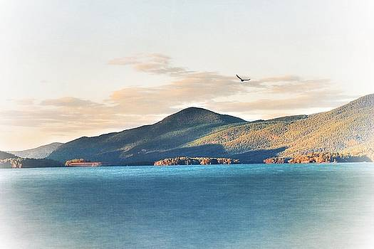 Soaring over the Adirondacks by Linda Ouellette