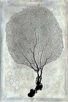 Soft Coral by Ramona Murdock
