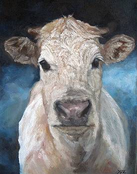 Soft Dun Blue Cow by Donna Ellery