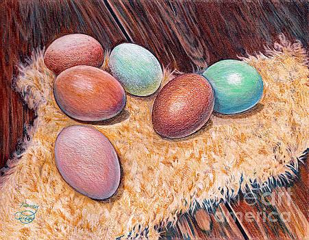 Soft Eggs by Nancy Cupp