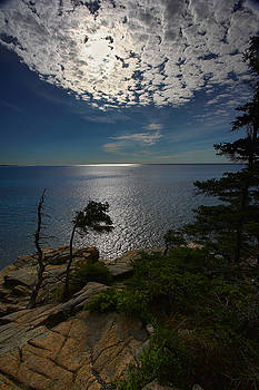 Neil Shapiro - Soft Light on Otter Point