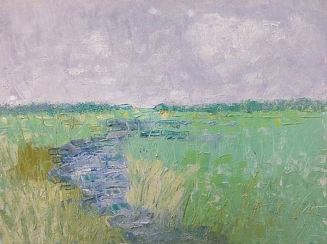 Soft Marsh by Coralie Donohue