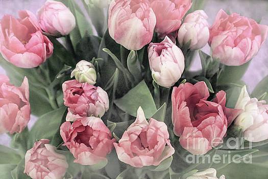Sandy Moulder - Soft Pink Tulips