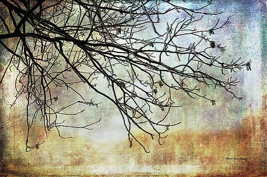 Soft Start of The Day by Randi Grace Nilsberg